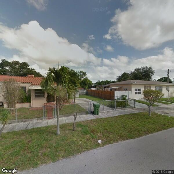 2020 Tree Trimming Cost Calculator Miami Florida Manta